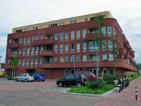 Grasboom Veenendaal
